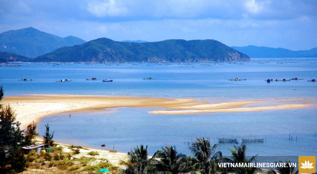 ve-may-bay-di-hai-phong-gia-re1