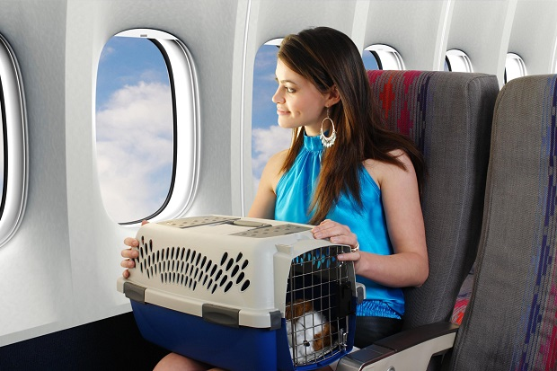 chính sách hành lý Vietnam airlines