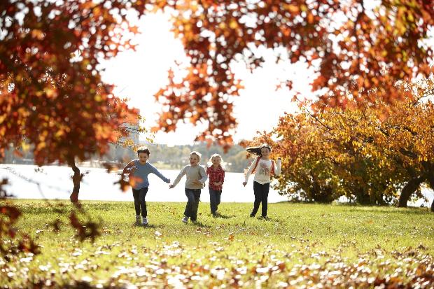 mùa thu ở Canberra