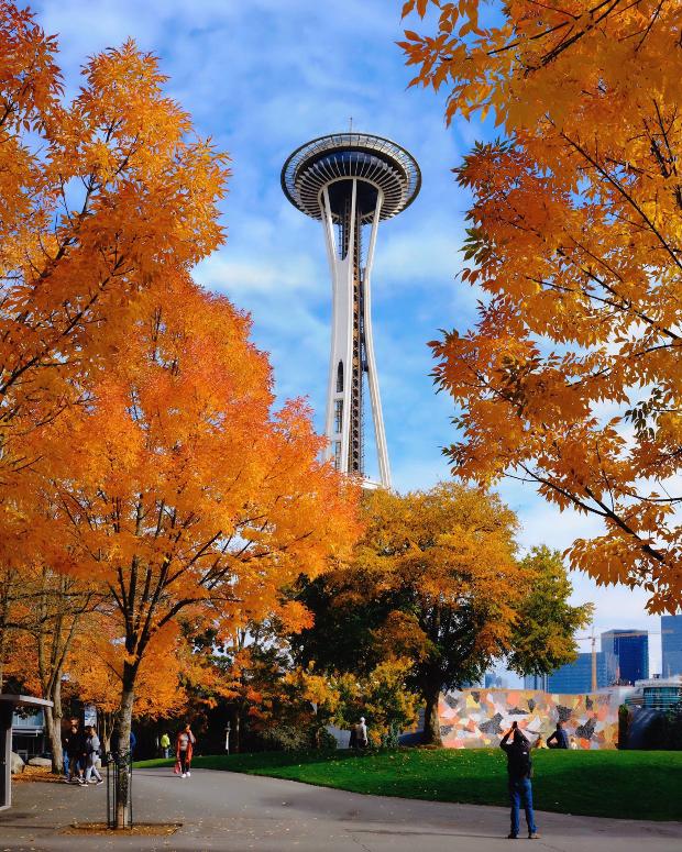 mùa thu Seattle